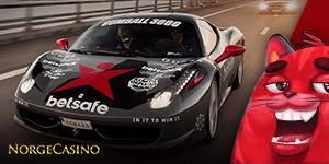 rød katt, svart sportsbil
