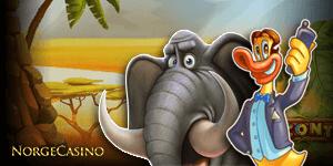 elefant og and