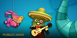 kaktus med hatt og gitar