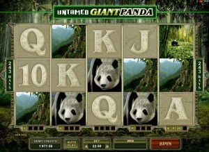 untamed-giant-panda-slot-gs