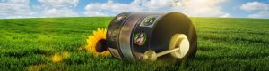 grass, blue sky, sunflower and wheels from slot