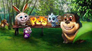 kanin, hund, katt, marsvin på en benk i en park